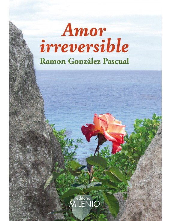Amor irreversible